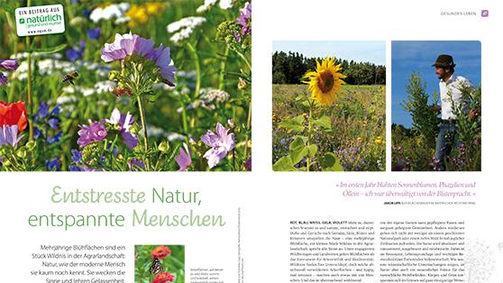 Umweltengagement im Interview mit Jakob Lipp